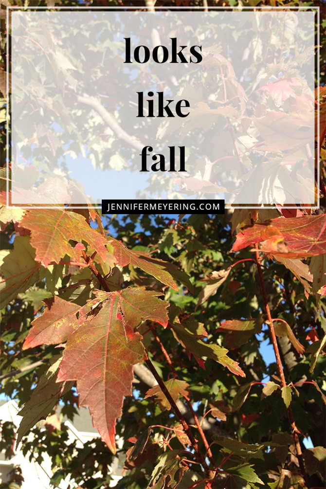 Looks like Fall! - JenniferMeyering.com