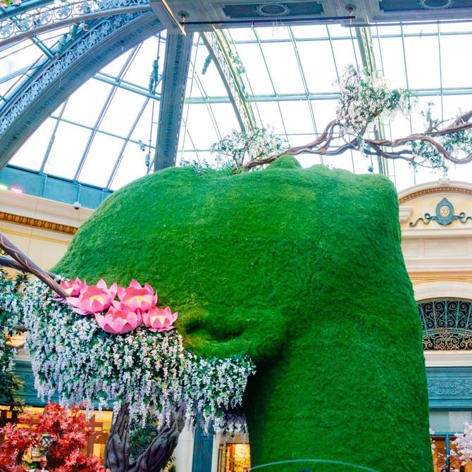 Travel Guide: Las Vegas - Bellagio Gardens