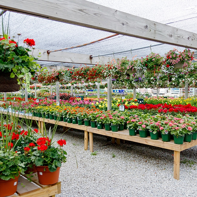 Travel Guide: St. Joseph - Sawyer Garden Center