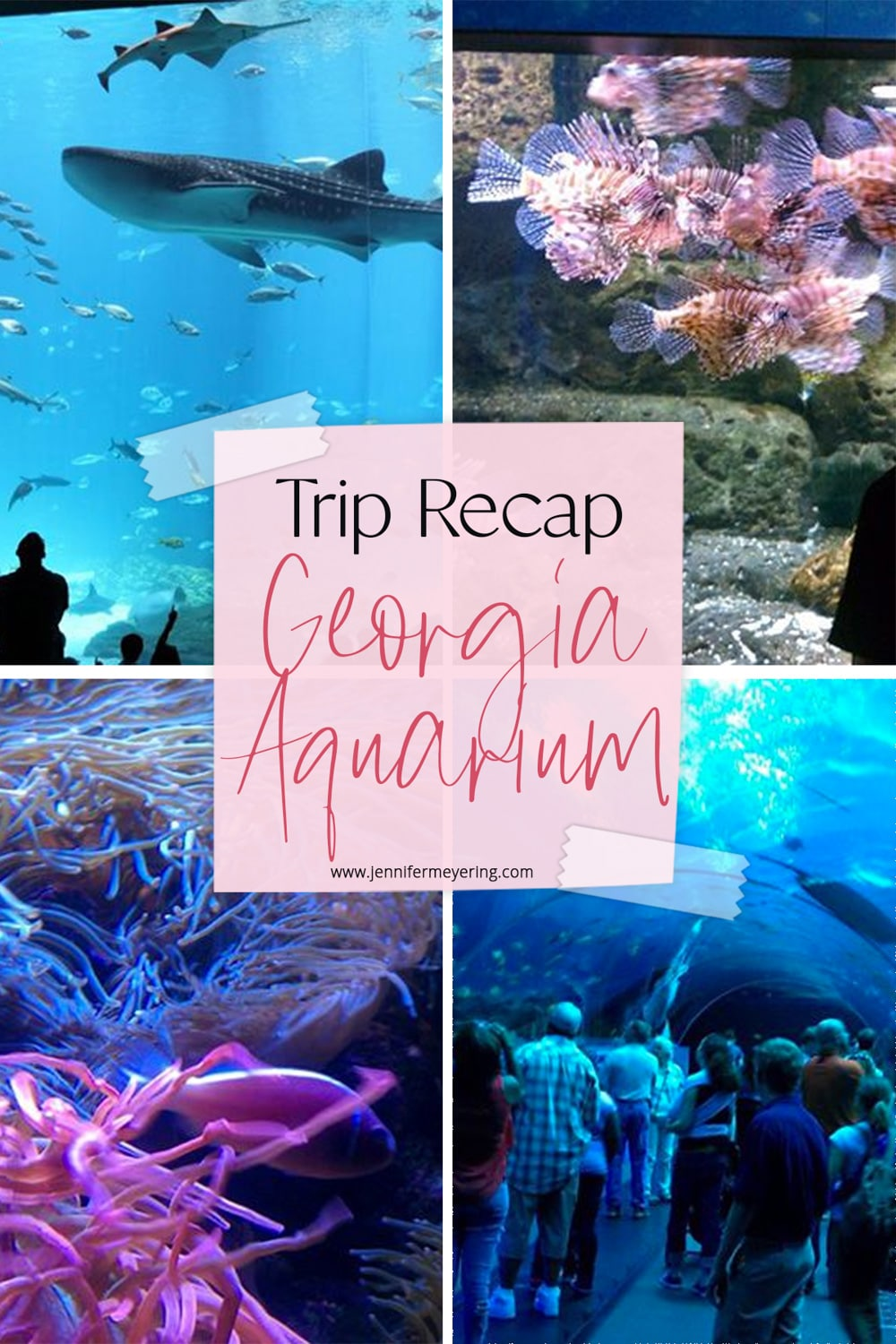The Georgia Aquarium Trip Recap - JenniferMeyering.com