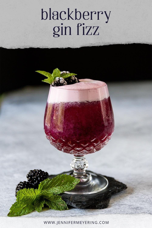 Blackberry Gin Fizz - JenniferMeyering.com