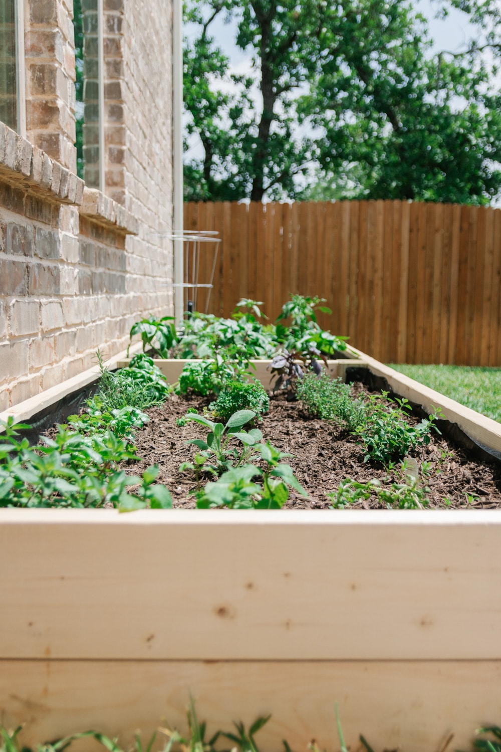In-Ground Garden Box